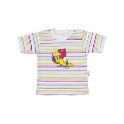 Tričko kr. rukáv - Papoušek