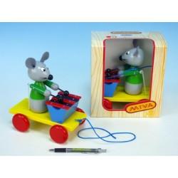 Myš s xylofonem dřevo tahací 20cm v krabičce 12m+